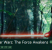 Star Wars - The Force Awakens banner